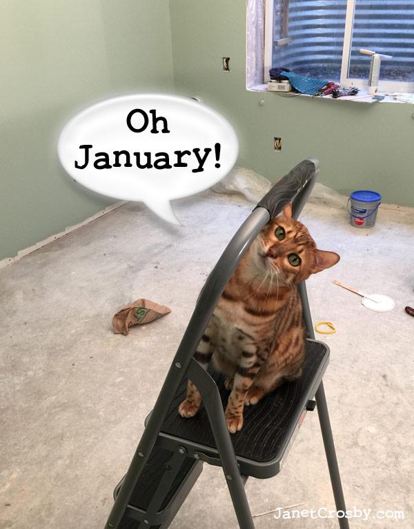 Oh January! janetcrosby.com