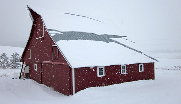 Snowstorm Barn by Janet Crosby