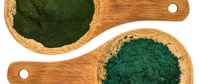 Chlorella ans spirulina supplemt powder - top view of isolated wooden