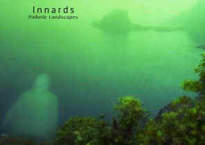 Innards:  Pinhole Landscapes