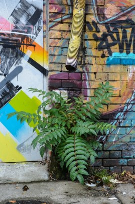 streetart2_0008