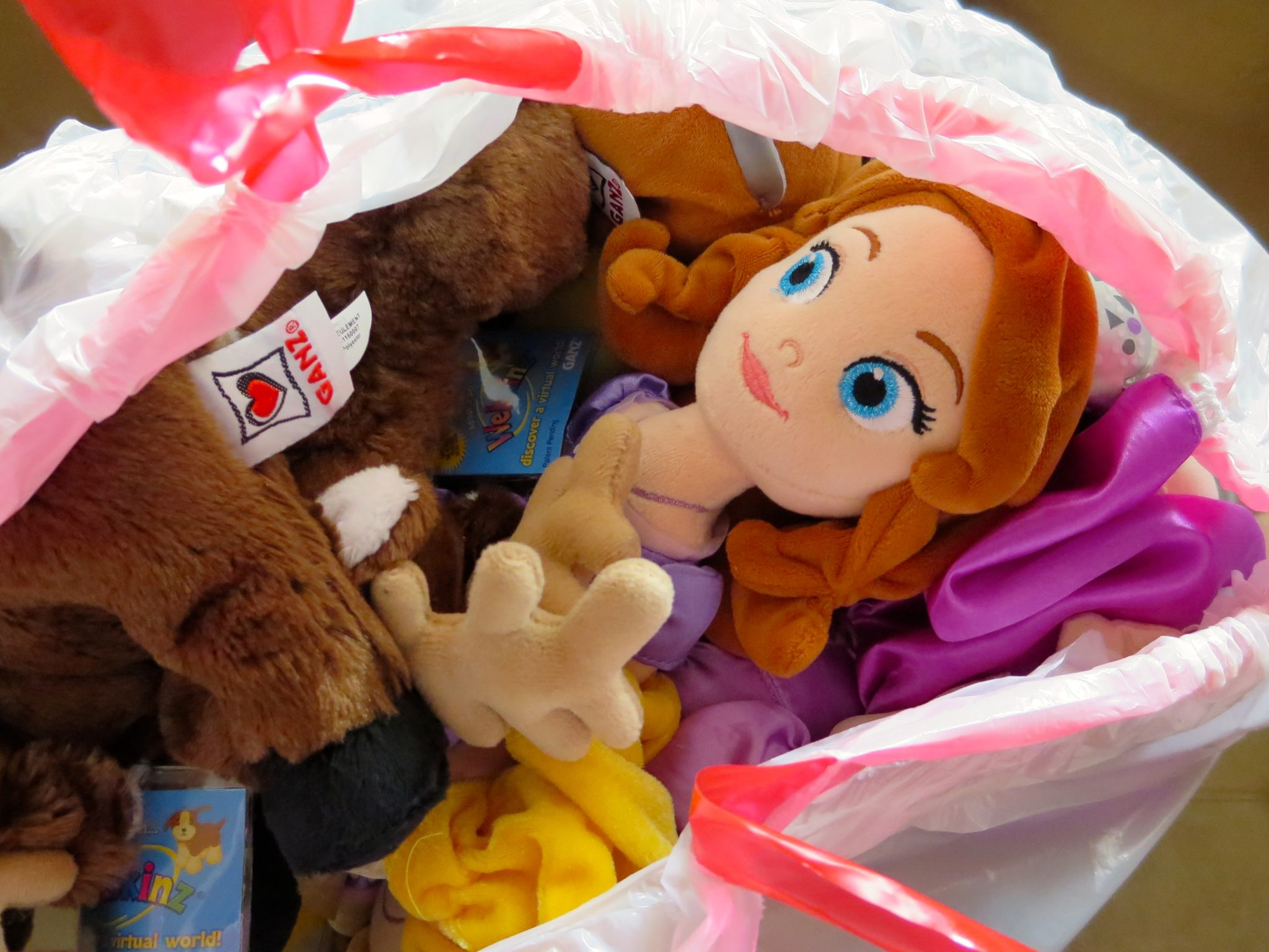 Open Bag With All the Actual Toys After Lily Opened the Bag!
