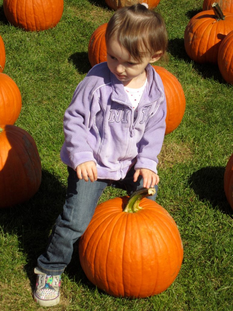 Emma 3 years ago Pumpkin Picking
