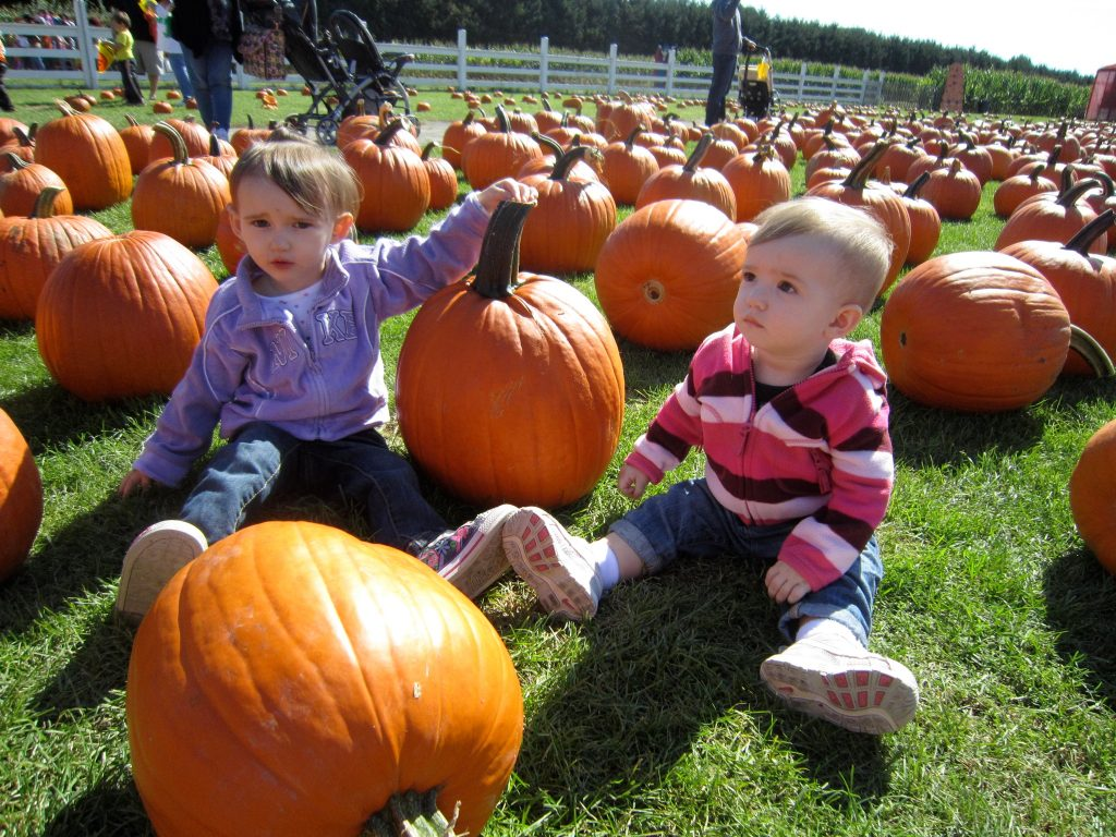 The Girls Pumpkin Picking Back in Fall of 2011