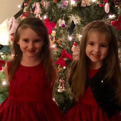 The Princesses 2014 Year in Review Wonderful Wednesday