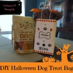 DIY Spooktacular Halloween Dog Treat Bag Tutorial