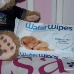 Top 10 Best Reasons That Your Big Kid Absolutely Needs WaterWipes