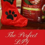 DIY No-Sew Dog Christmas Stocking
