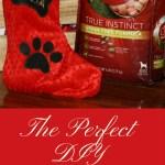 DIY No-Sew Dog Christmas Stocking