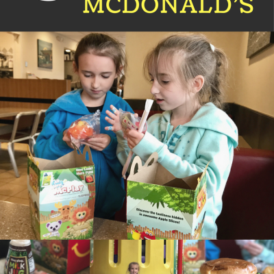 5 Reasons Why Your Family Needs to Visit McDonald's