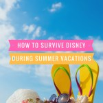 How To Survive Disney During Summer Vacations