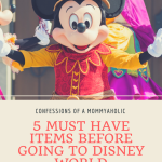 5 Must Have Items to Buy Before Going to Disney World