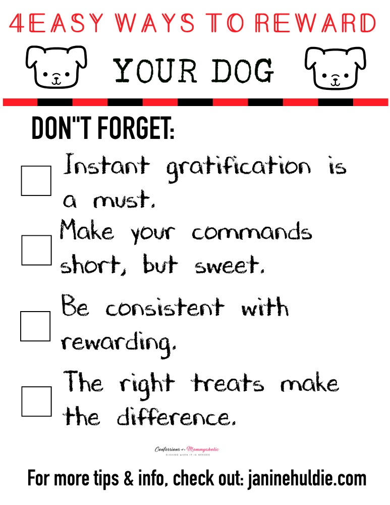4 Easy Ways to Reward Your Dog