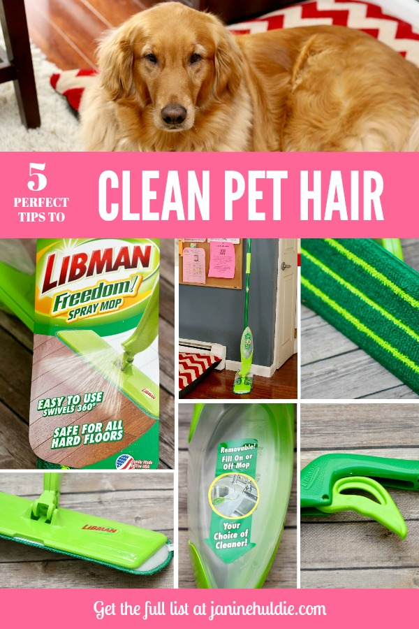 5 Perfect Tips to Clean Pet Hair