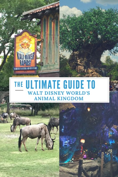 The Ultimate Guide to Walt Disney Worlds Animal Kingdom