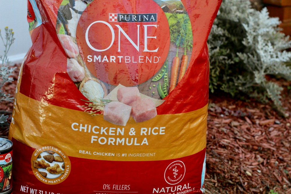 Purina One Dog Food Dry Dog Food Closeup