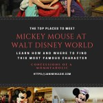 The Top Places to Meet Mickey Mouse in Walt Disney World