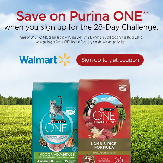 Purina One, This Mom's Confessions