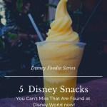 Can't Miss Disney Snacks Found at Walt Disney World