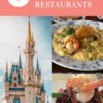 Single Credit Table Service: 5 Best Disney World Restaurants