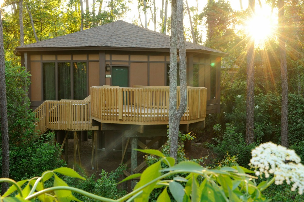 Saratoga Springs Treehouse Living