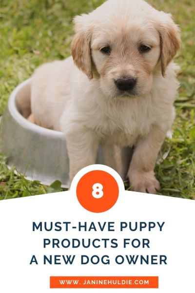 8 Must Have Puppy Products for A New Dog Owner