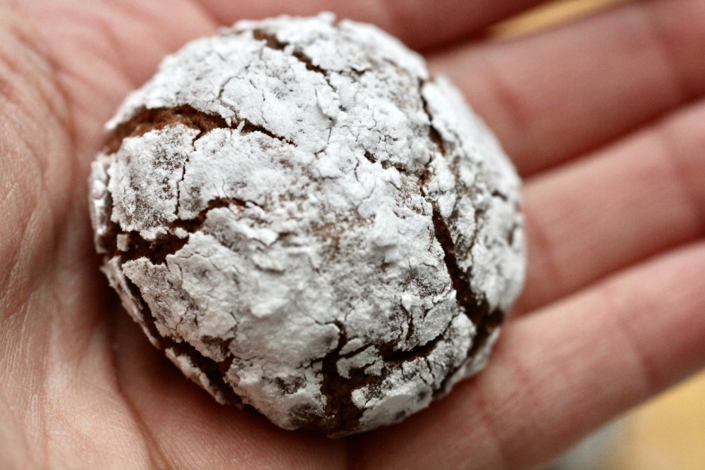 Chocolate Crinkle Cookie in Hand