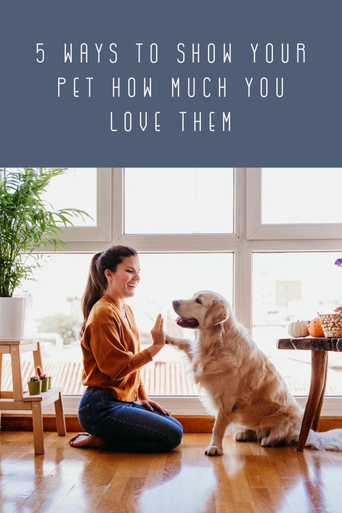 Show Your Pet Love