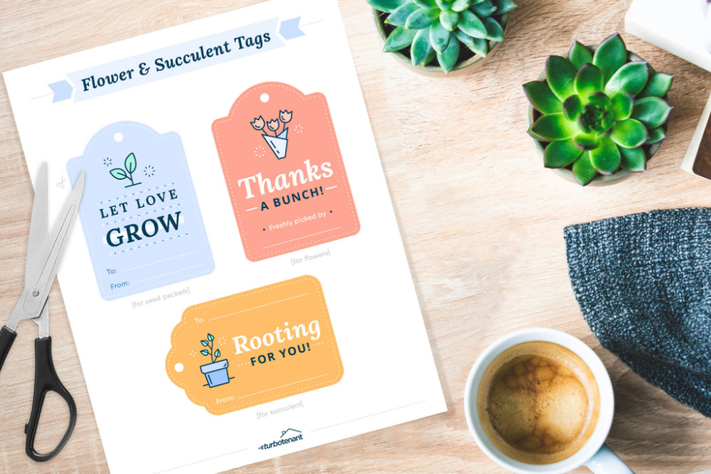 Flower and Succulent Tags