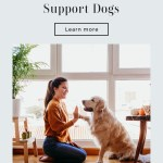 Dogs For Emotional Support