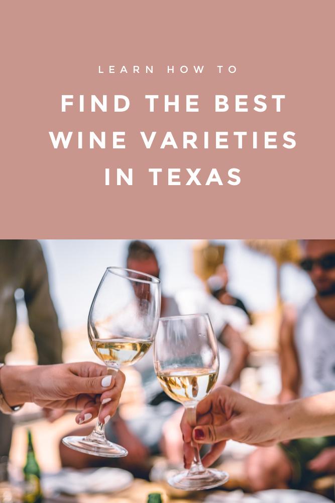 Best Wine Varieties Tips