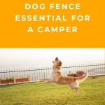 Why Is A Dog Fence Essential For The Camper?