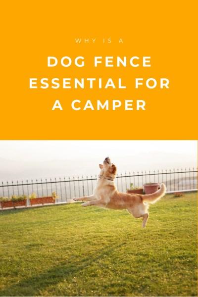 Dog Fence Tips for Campers