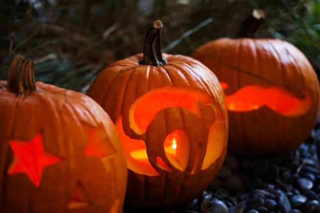 Pumpkins-1-Three-645x429