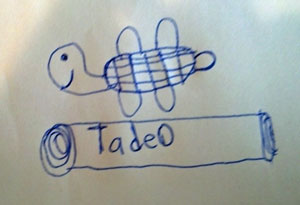 Picture Tadeo