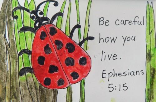 Be-careful---ladybug-web