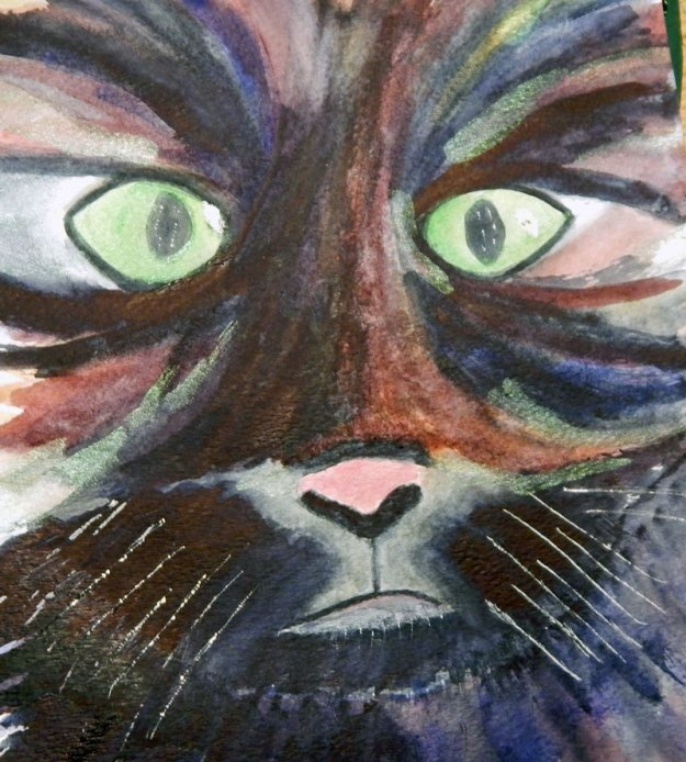 watercolour black cat Janis Cox