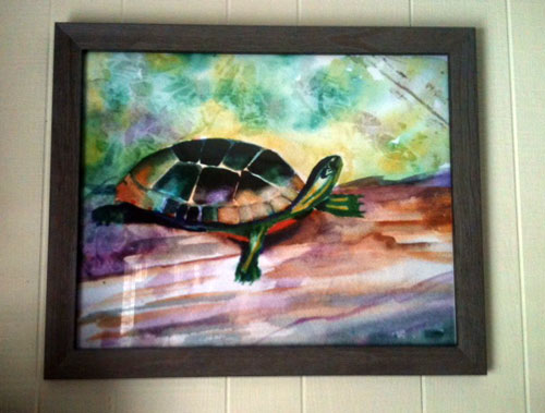 Tadeo Turtle - on someone's wall