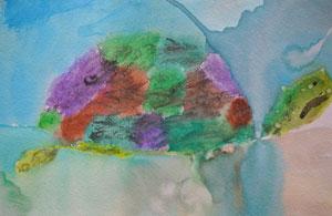 Tadeo Turtle - Children's Gallery