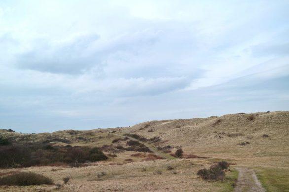 Noordhollands Duinreservaat Wandern
