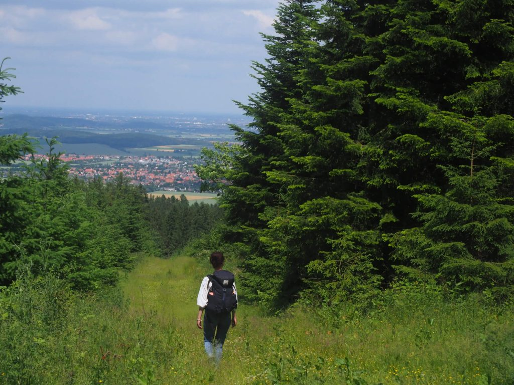 Wandelen in de Deister tijdens stedentrip in Hannover