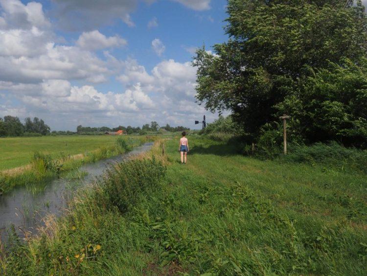 Wandelen Kraanlannen in Friesland