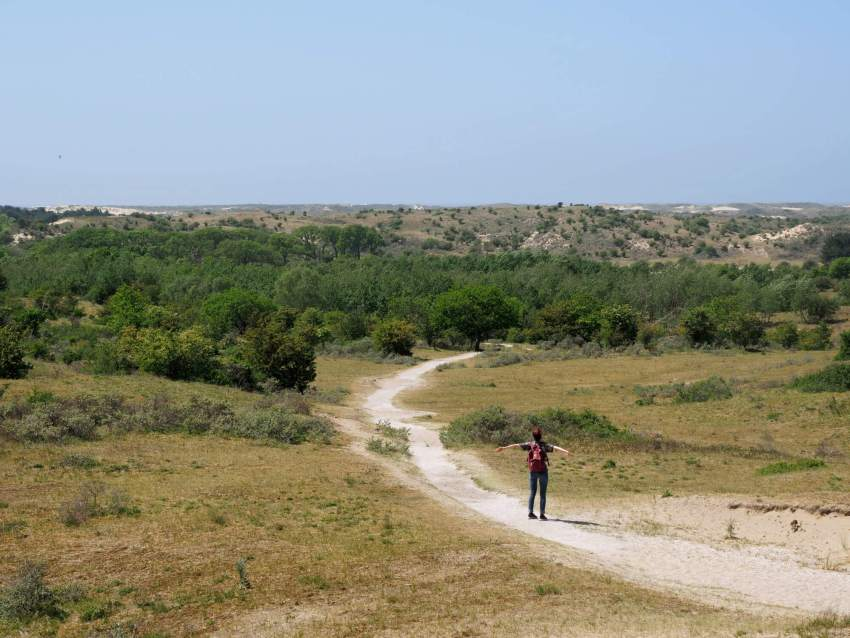 Nationaal Park Zuid-Kennemerland wandelen