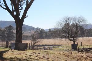 The farm in winter, Jannei Goat Dairy, Australian Goat cheese