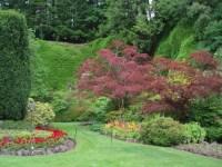 northwest backyard landscaping ideas garden design ideas ...