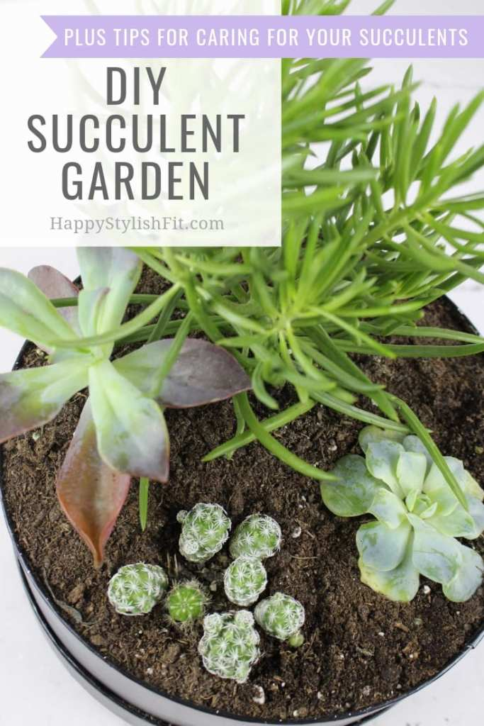 How to make your own indoor DIY succulent garden plus tips for how to care for succulents. #Succulent #Gardening #SucculentGarden