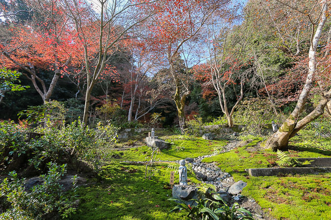 Autumn Color Reports 2016 - Kyoto: Beyond Peak