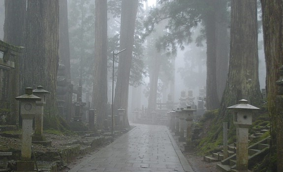 Mount Koya  Koyasan Travel Guide