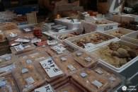 Tsukiji : le marché aux poissons de Tokyo