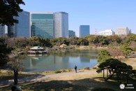 Jardin Hamarikyu : retour à l'époque Edo au cœur de Tokyo